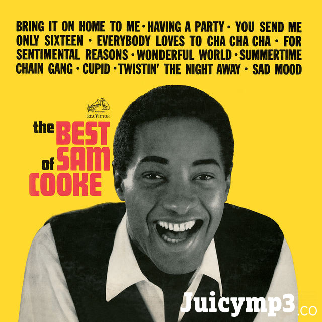 The Best of Sam Cooke Album Cover