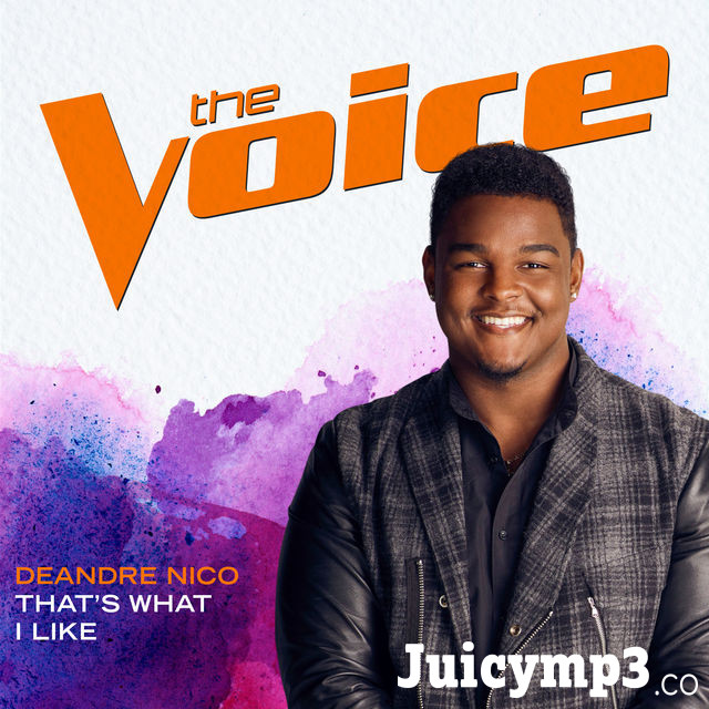 That's What I Like (The Voice Performance) - Single Album Cover
