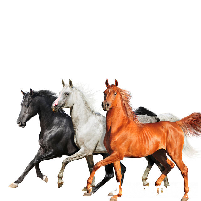 Download Lil Nas X - Old Town Road