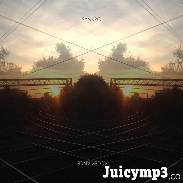 Download Synkro - Acceptance