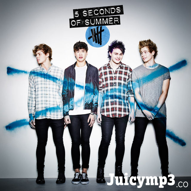 Download 5 Seconds of Summer - Amnesia